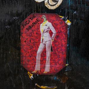 London Graffiti. Es zeigt das Bild einer Frau im Anzug mit Taubenkopf auf einem tapetenartig in Rottönen gemusterten Hintergrund mit abgeschrägten Ecken.