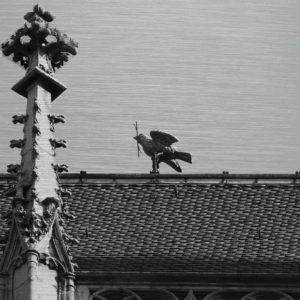 Das Wahrzeichen von Ulm – der Ulmer Spatz. Es zeigt das Bild eines Vogels, welcher auf dem First eines Daches sitzt und einen Zweig im Schnabel hat. Im linken Bildteil ist ein kleiner Turm vom Ulmer Münster zu sehen. Das Bild ist in den Farben Schwarz-Weiss.
